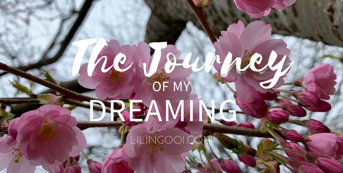 The Journey of My Dreaming